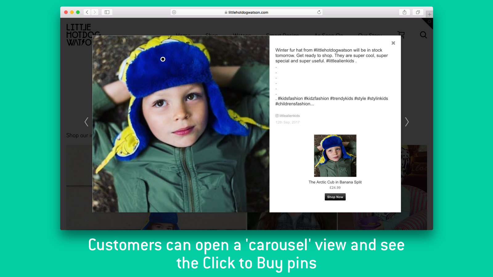 The Carousel view of InstaShop, seen when customers click on a p