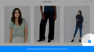 Let shoppers ask questions while they browse your online store