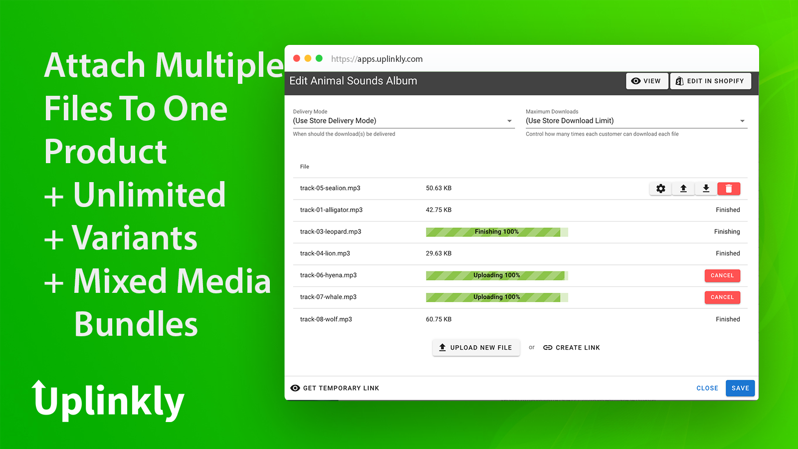 Add multiple files, physical & digital variants and mixed media