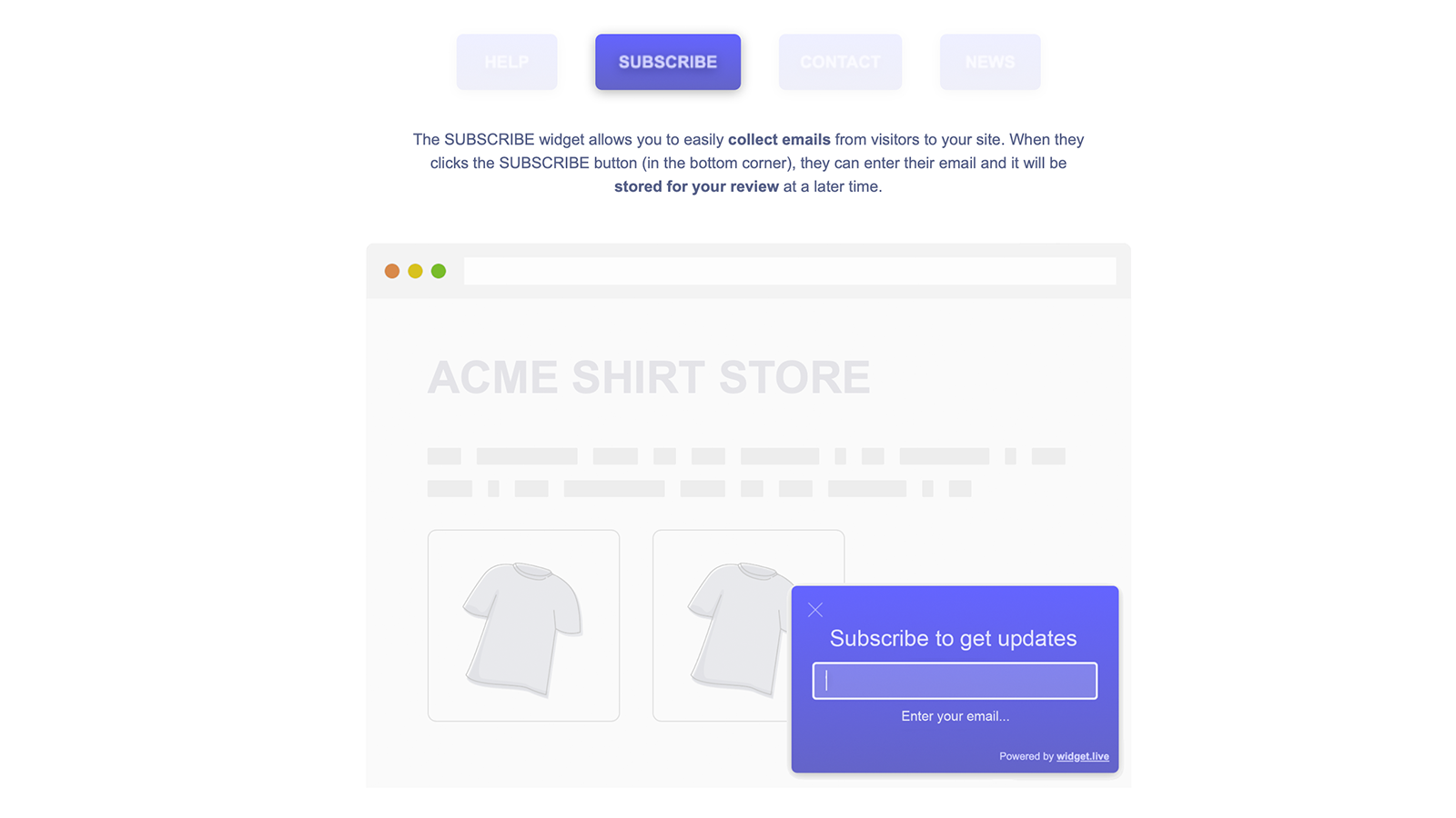 Access the whole suite of widgets + make them live on your store
