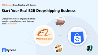 Start your real B2B dropshipping business