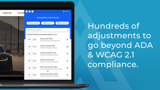Hundreds of adjustments to go beyond ADA & WCAG 2.1 compliance.