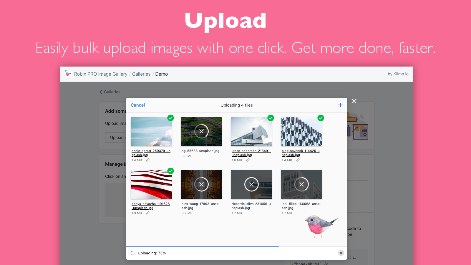 Bulk upload your photo gallery images with one click