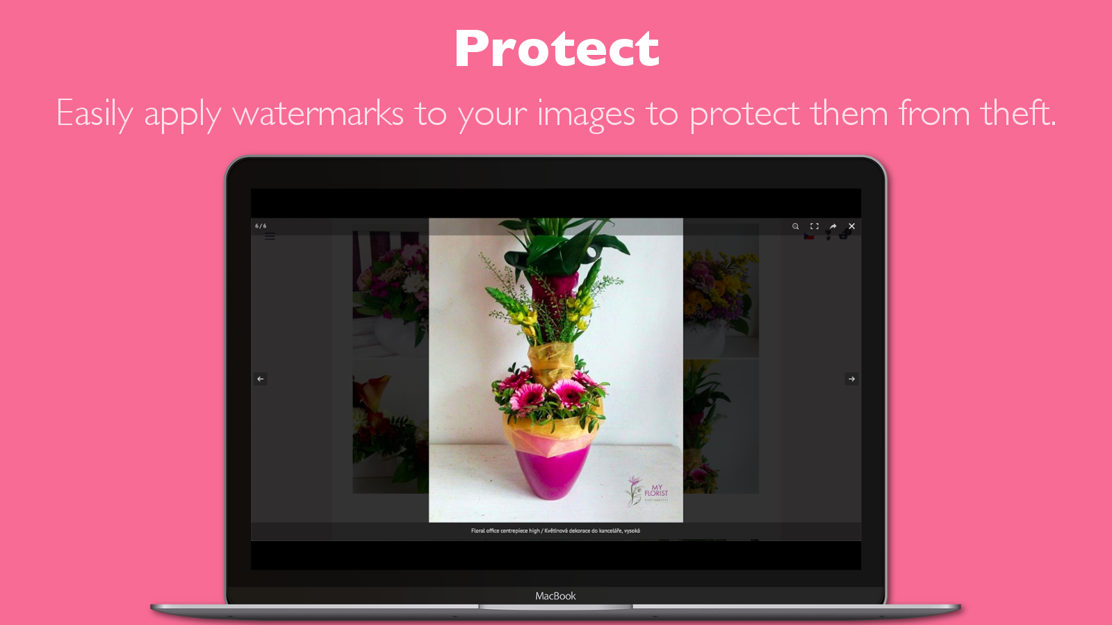 Apply watermarks to your photo gallery images to protect them.