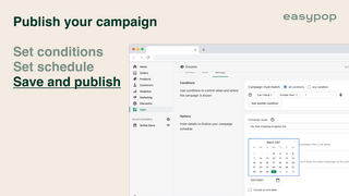 Easypop campaign settings page