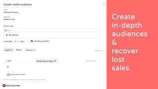 Create in-depth audiences & recover lost sales