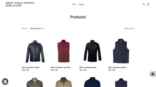 Visual Search Icon in Storefront