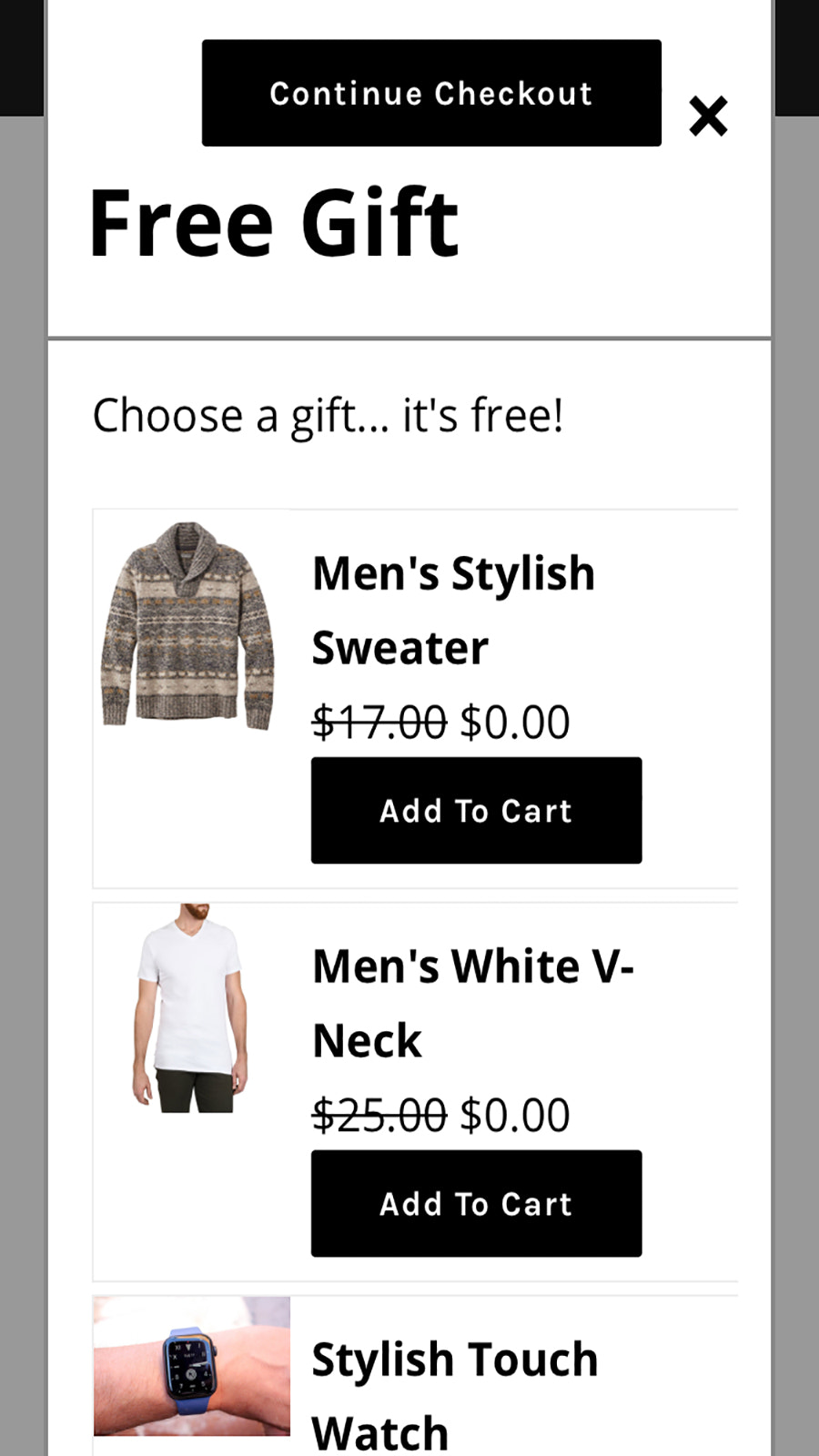 Add product(s) to cart, go to checkout and the app will appear.