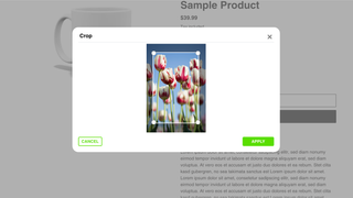 Upload-Field popup - image cropping
