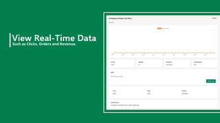View Real Time Data From Your Links