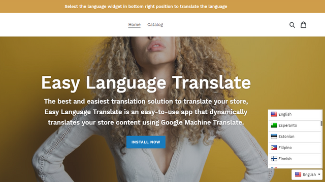 easy language translate widget preview