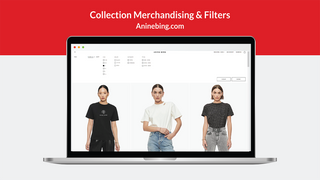 Collection and Search Merchandising & Filters