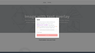 Store page style