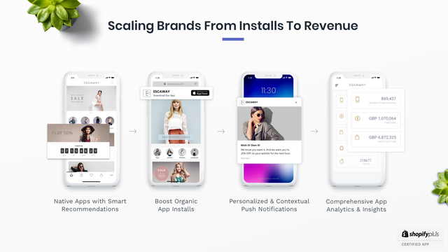 Scaling brands from installs to revenue