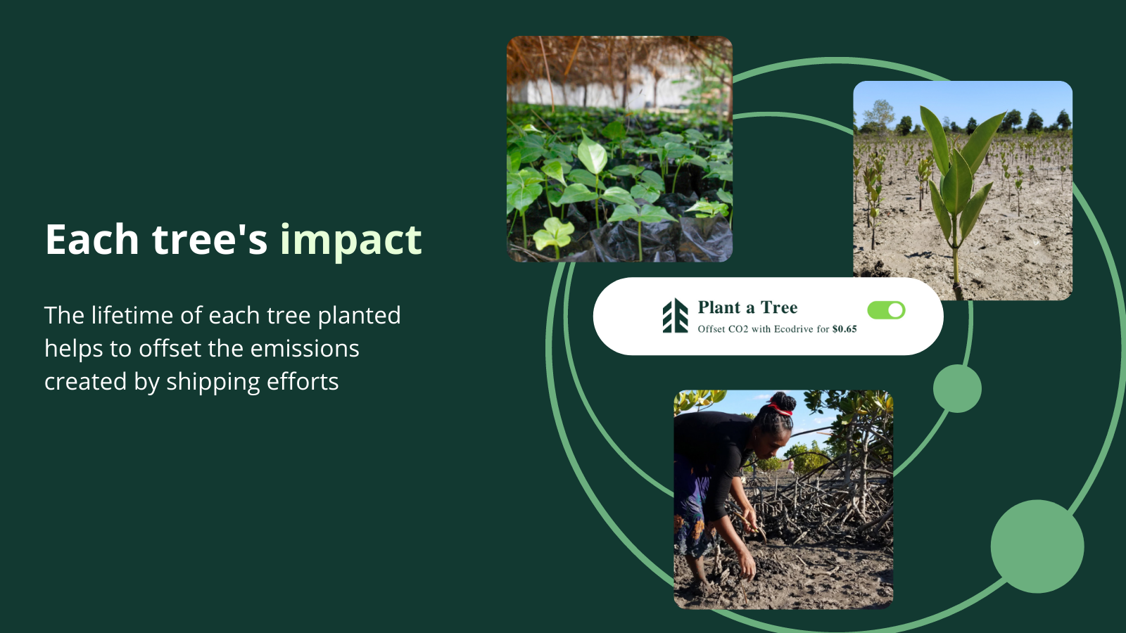 Each tree will make order's climate positive & alleviate poverty