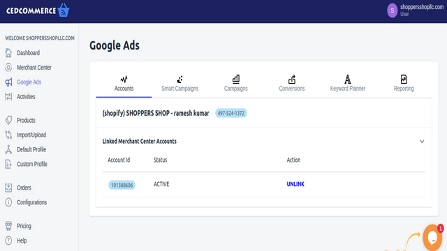 Google ads Section, Shopify Plus, google shopping