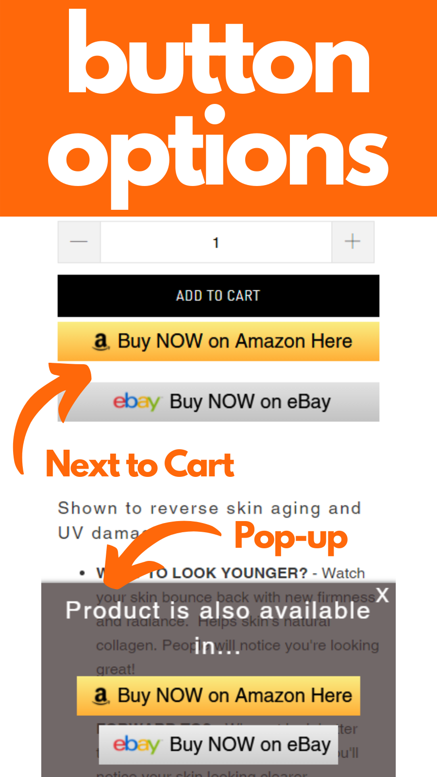 Button Options: by Add to Cart button - Popup Button