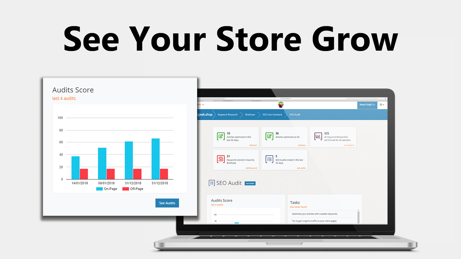 See your store grow with Plug in SEO audits and SEO stats