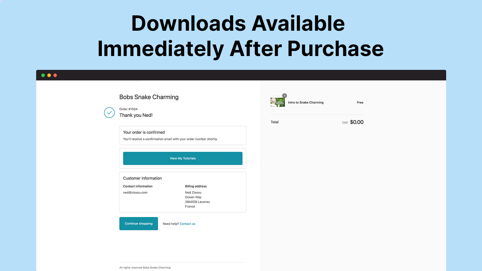 Immediate download access for purchasers