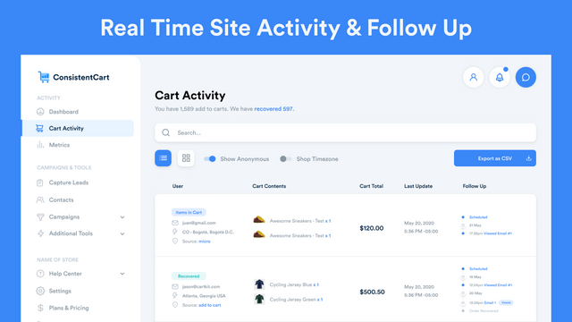 Real Time Site Activity & Follow Up