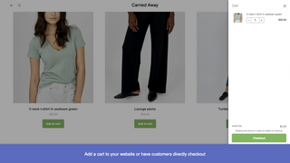 Add a cart to your website or have customers directly checkout