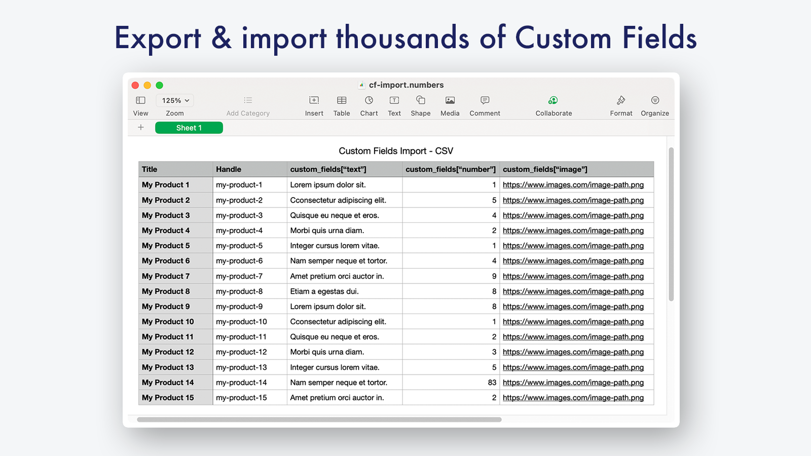 Import Custom Fields data for thousands of records