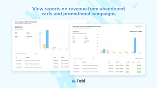 Reports on revenue from abandoned carts & promotional campaigns