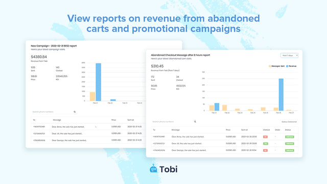 Reports on abandoned cart recovery & promotional campaigns