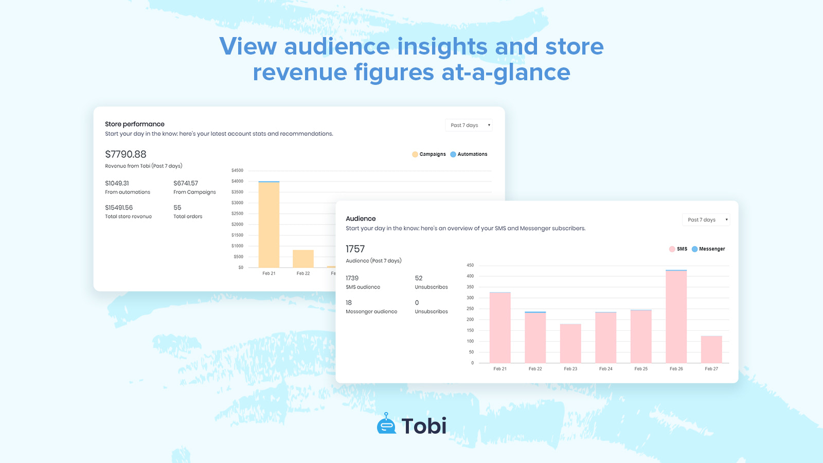 Audience insights and revenue reports for SMS campaigns