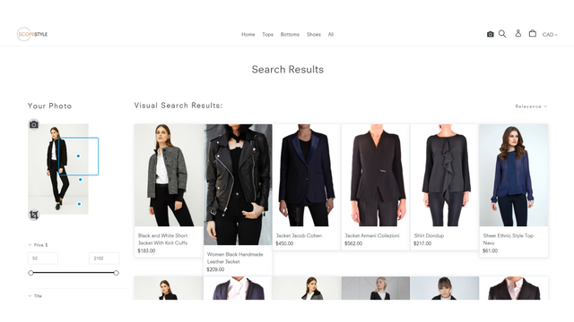 AI powered visual search result.