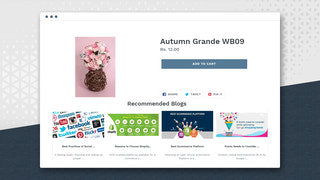 Display of blogs on products