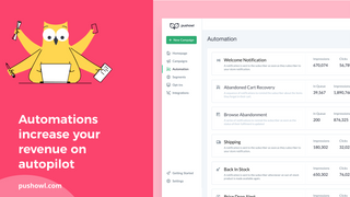PushOwl's automation increase your revenue on autopilot