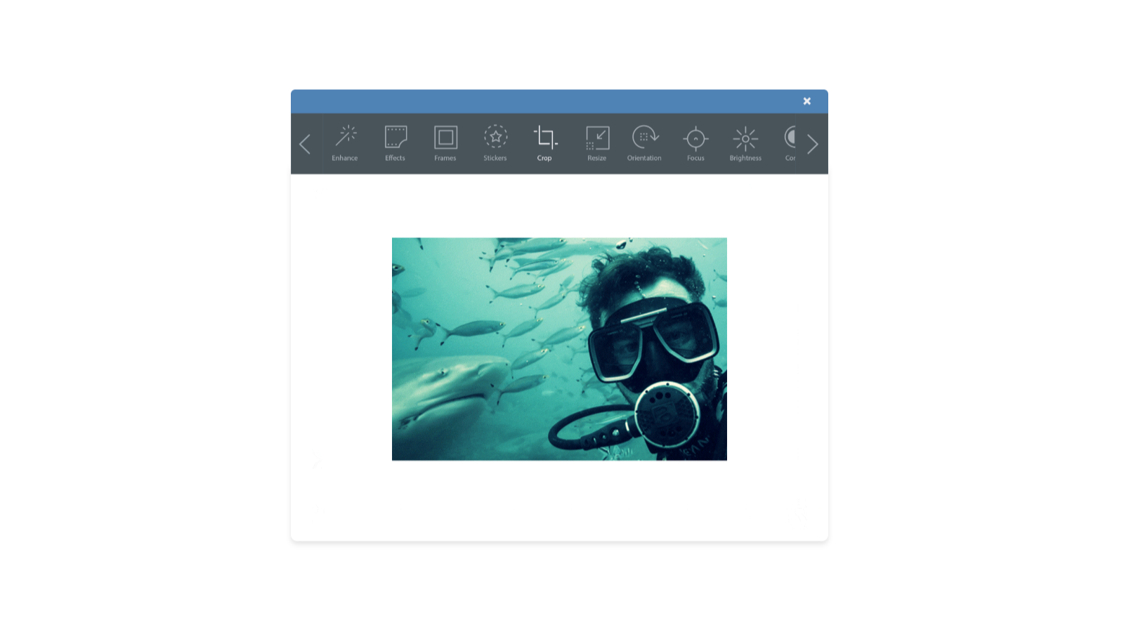 Photo Editing. Make edits directly in your email template.