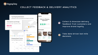 Delivery feedback and analytics