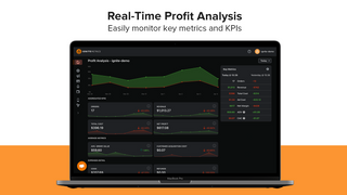 Simple to use profit analysis