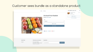 Customer sees bundle as a standalone product