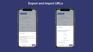 Export and Import_Broken Link Manager