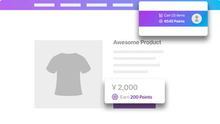 EasyPoints Product Page Example