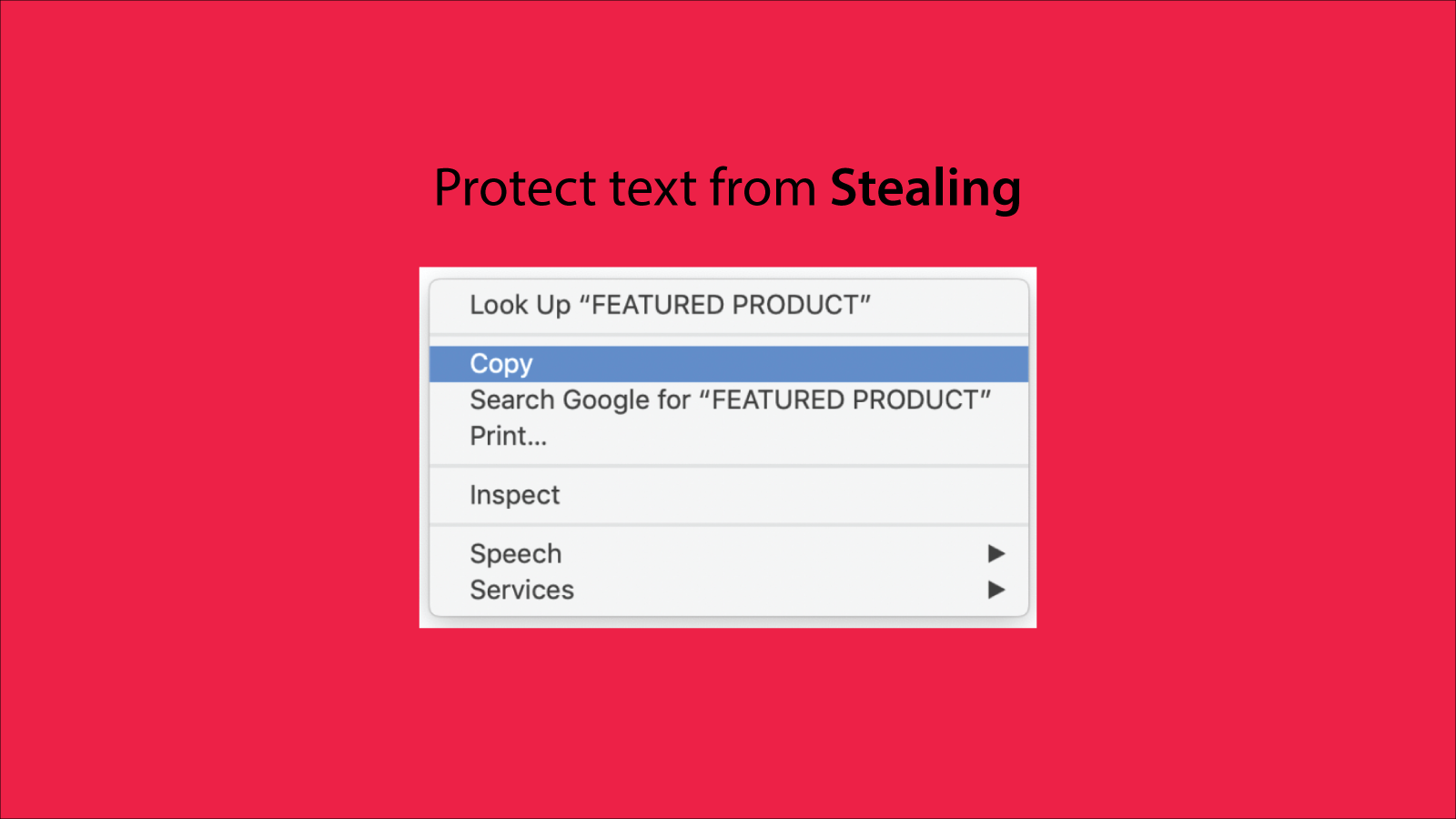 Protection from Stealing