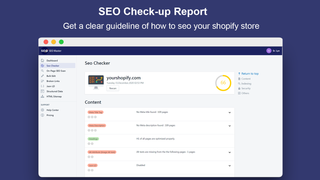 SEO Check-up Report