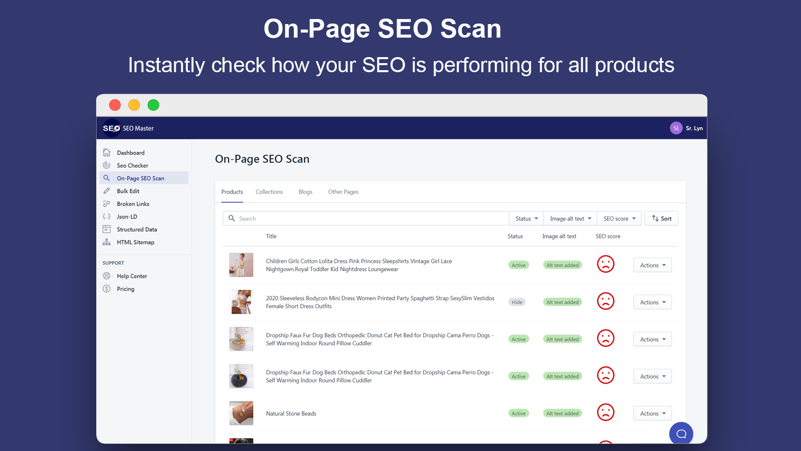 On-Page SEO Scan_SEO Master
