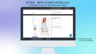 iconx app shopify screen shot 2