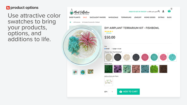 Plant Collective DIY terrarium swatches from Product Options