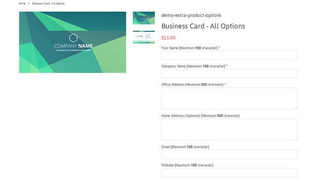 Product option inputs in product details page