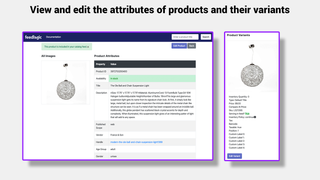 Edit Product and Variant Attributes