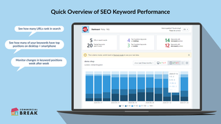 Quick Overview of SEO Keyword Perfomance