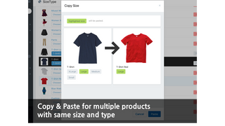 copy and paste feature shows images of two products