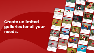 Create unlimited video galleries for all you needs