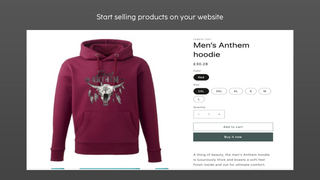 Start selling products on your website