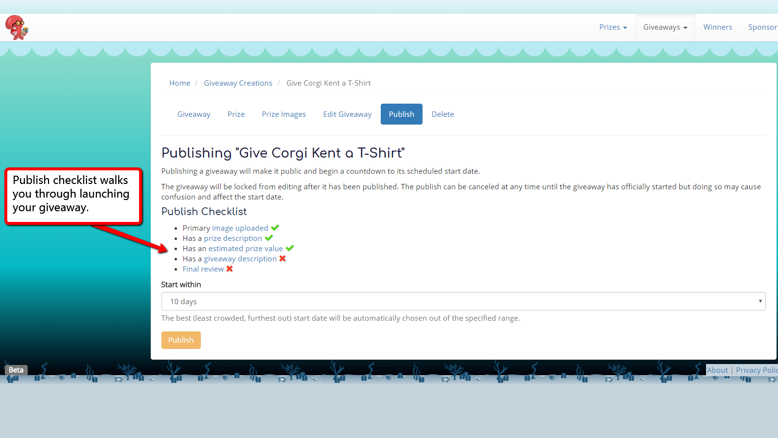 The publish checklist makes launching a giveaway easy.
